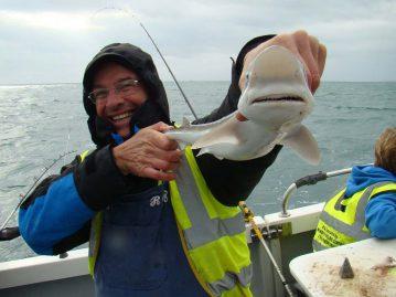 wibac boat fishing weymouth small tope