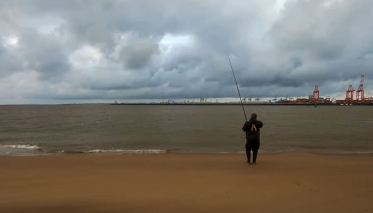 Mersey thornback fishing