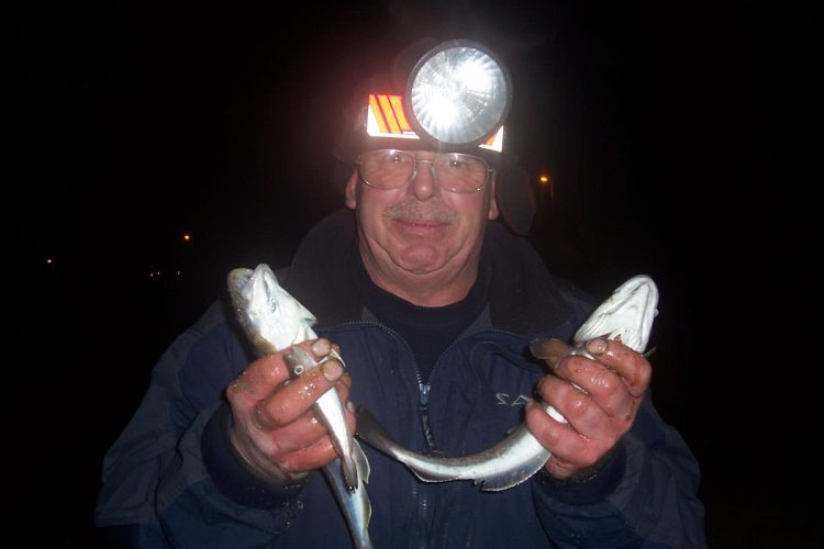 dave-whiting
