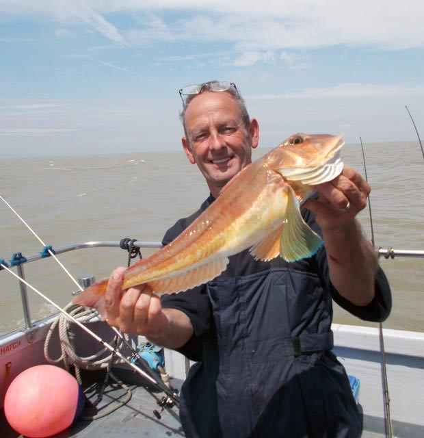 A slightly unusual catch of a tub gurnard
