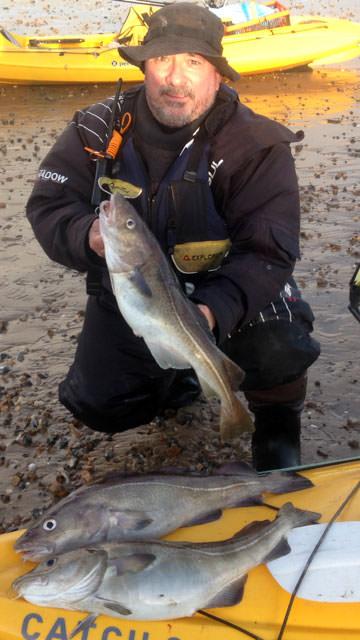Kayak angler Alan Tipple and his catch of codling