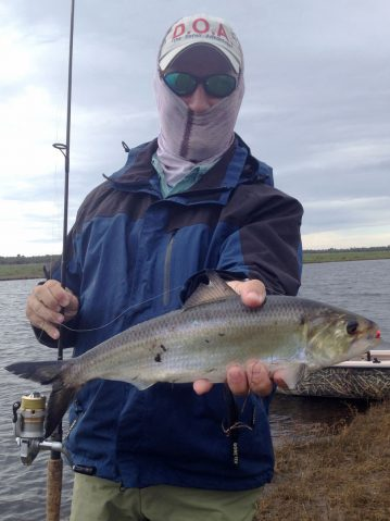 mosquito lagoon fishing