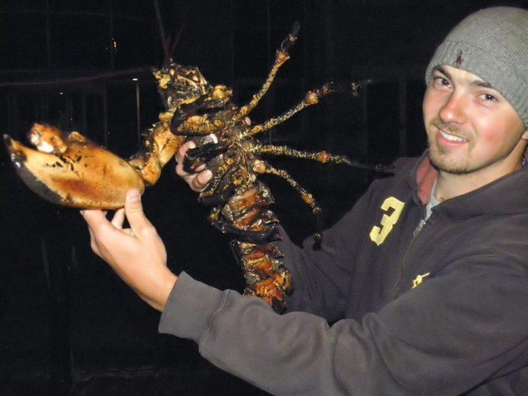 Ryan's lobster