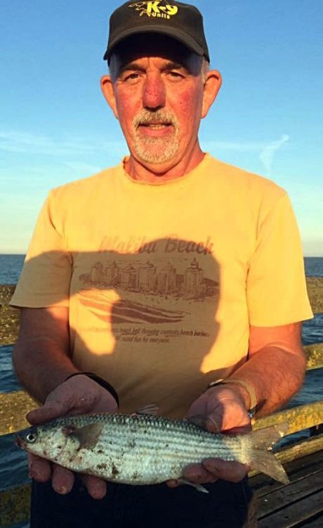 Vic Pearce with an unusual grey mullet catch that helped him into 3rd place in the Walton Sea Angling Club finals