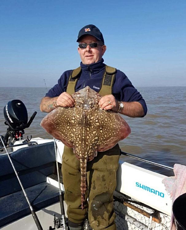 ray caught off Essex beaches