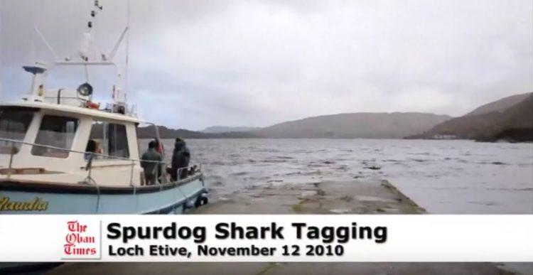 Loch Etive tagging