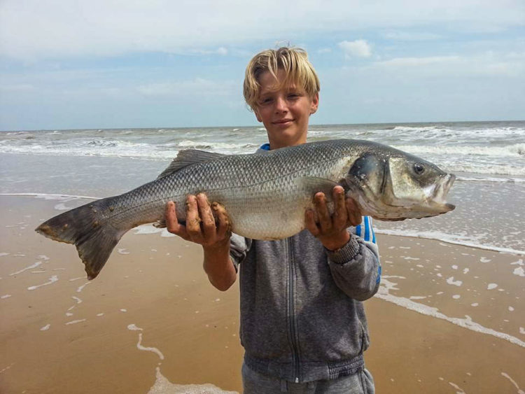 Baily with his bass