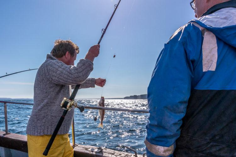 Trip organiser Alan with a small haddock in the sun